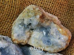 2000 Carat Lots of Celestite Crystals Plus a FREE Faceted Gemstone