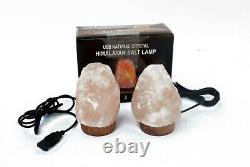 2xNatural Shape Himalayan Rock Pink Salt Lamp Ionizing Crystal Home Decor Unique
